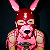 Pink latex dog